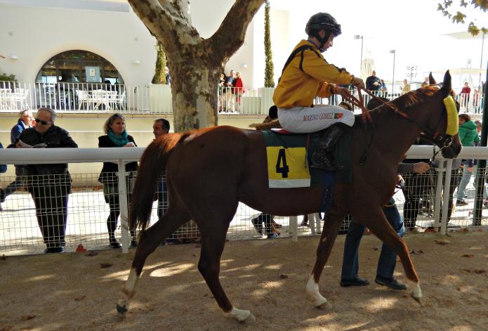 0 caballos niños blog moda infantil
